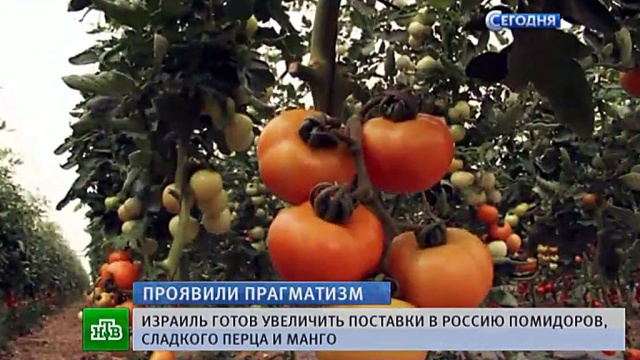vegetables_and_fruits_02