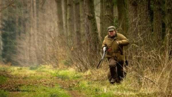 Когда охотник, чуть не стал добычей