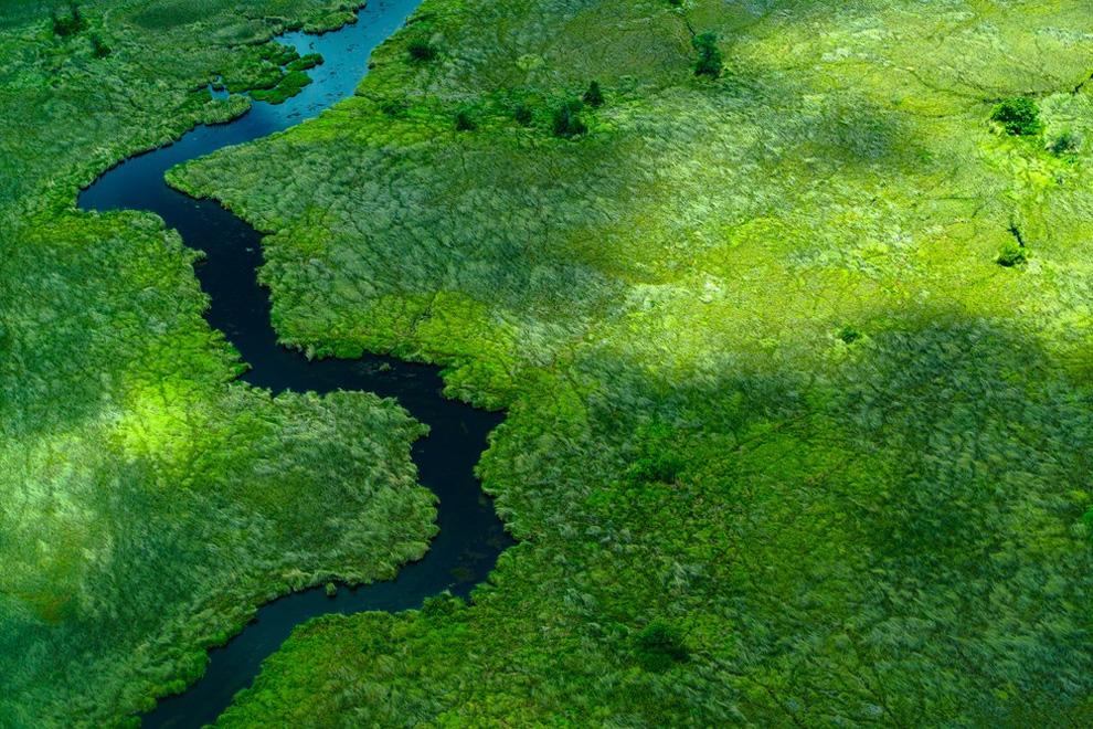 Дельта реки Окаванго, Ботсвана. Категория: Портфолио.