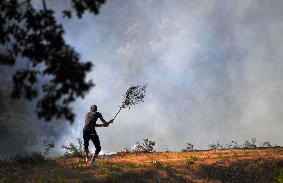 Волонтер тушит пожар веткой, Борм-ле-Мимоза, 26 июля 2017.