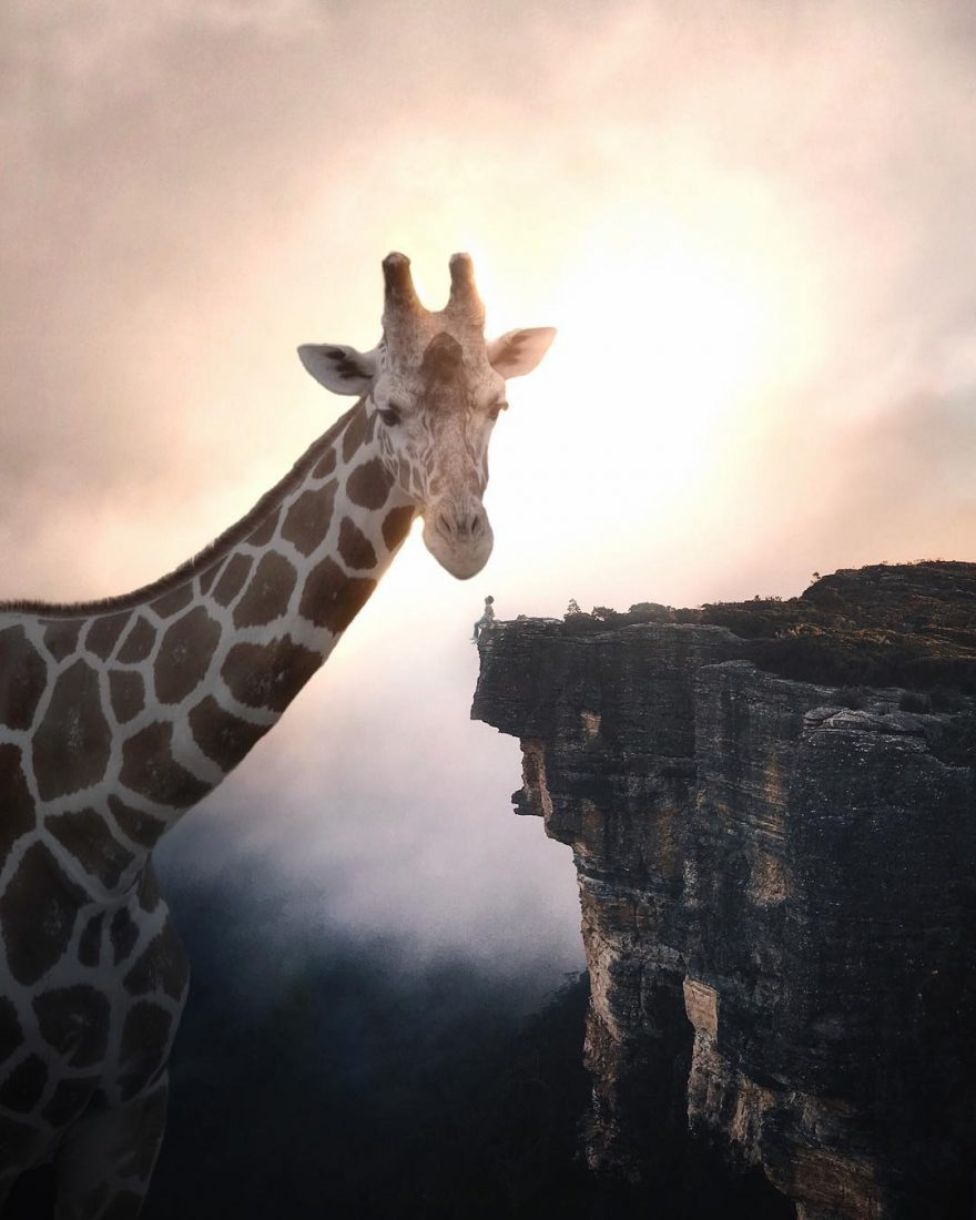 Огромные животные и маленькие люди в сюрреалистических фото