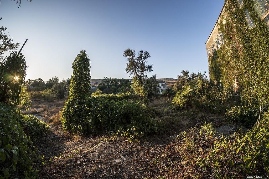 Заросший пионерский лагерь в Крыму