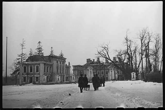Ленинградский фронт, 1943 год: