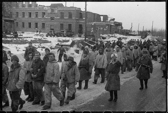 Немецкие солдаты и офицеры, взятые в плен в боях за Ленинград. Ленинградский фронт, 17 января 1944 года.