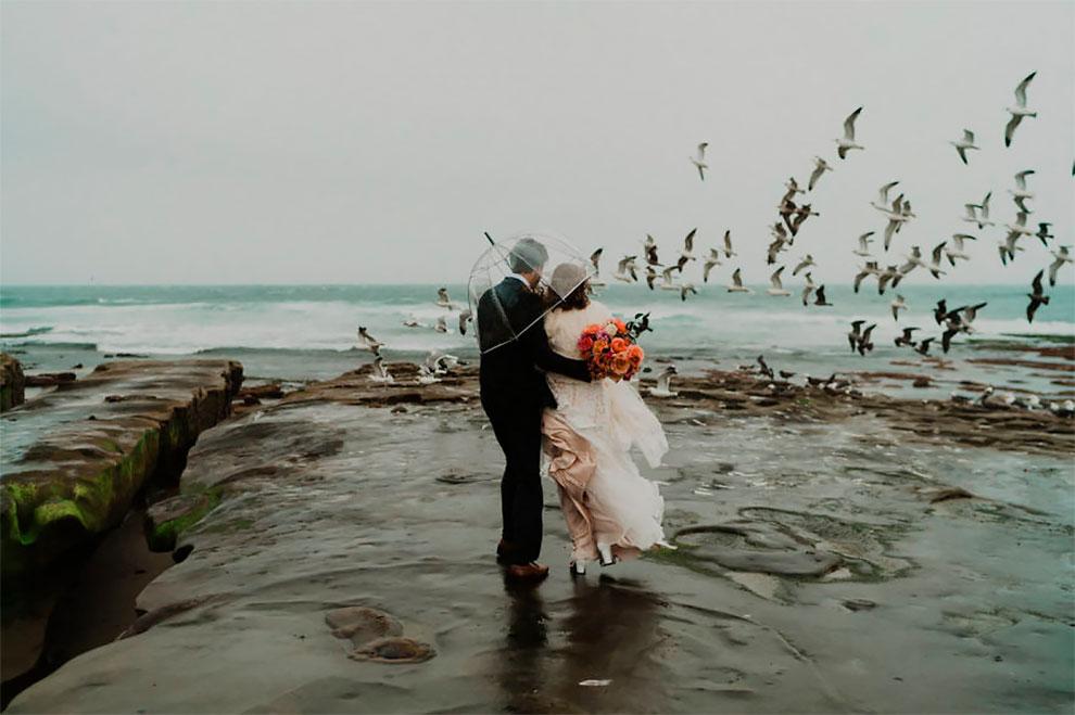 Лучшие свадебные фотографии 2019