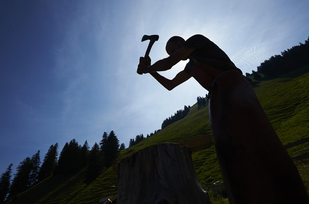 Как производят сыр в Швейцарии