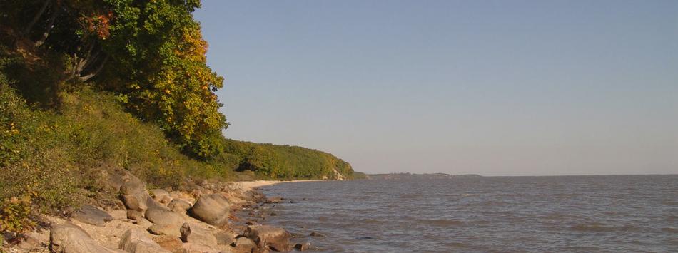 В озеро впадают 16 рек, в частности Илистая, Мельгуновка, Комиссаровка; вытекает река Сунгача, приток Уссури (бассейн Амура).  На озере расположено село Камень-Рыболов.  На водоёме организован международный российско-китайский Ханкайский заповедник.