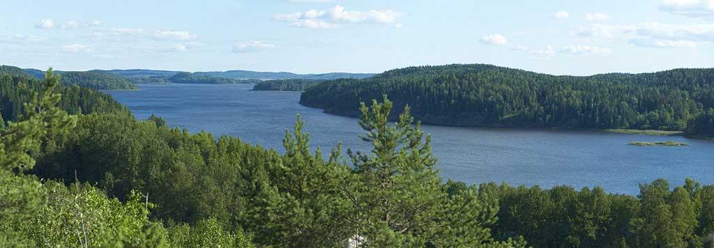 В этом гигантском водоёме можно насчитать 1650 островов. Кроме того, в Онежское озеро впадают около 50 рек, а вытекает только одна — Свирь.