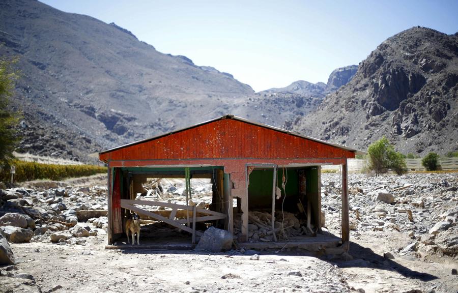 Заброшенный дом в районе, который пострадал от наводнения в городе Лос-Лорос, Чили.