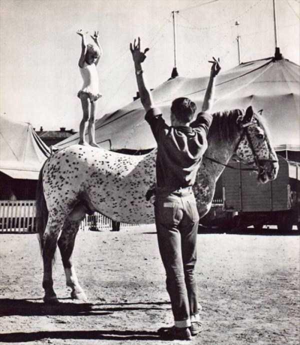 circus_25