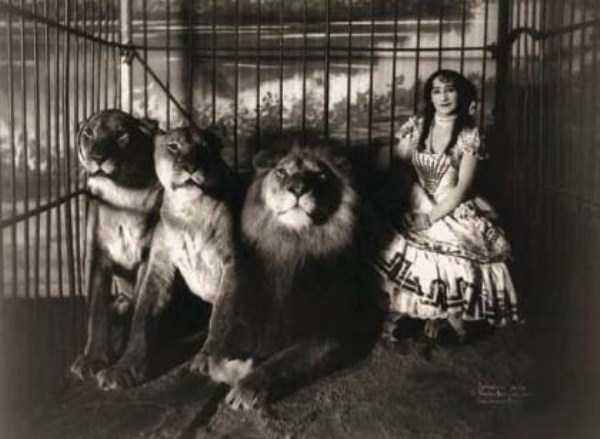 circus_44