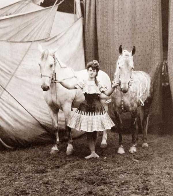 circus_47