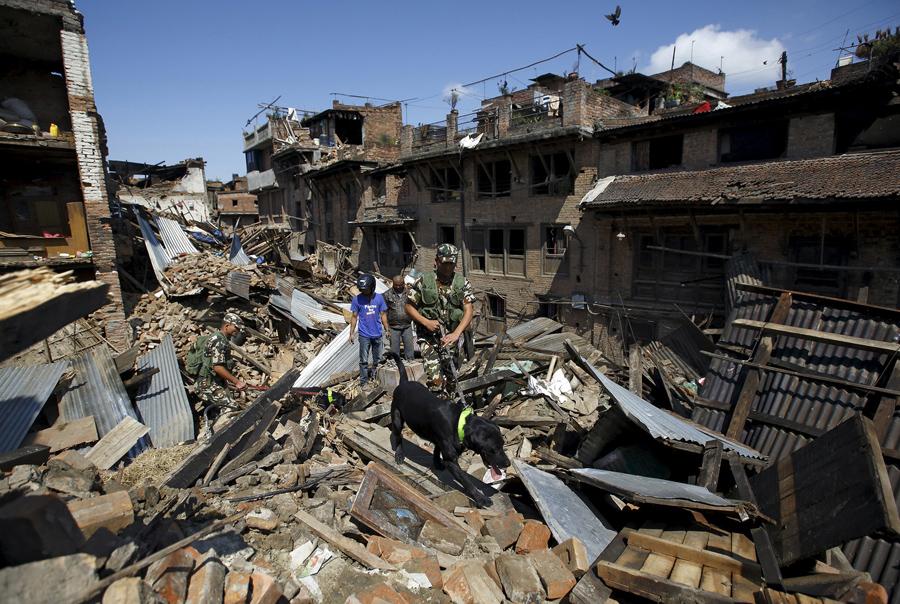 Непальская армия с обученными собаками для поиска пострадавших в завалах рухнувших домов после землетрясения в Бхактапур.
