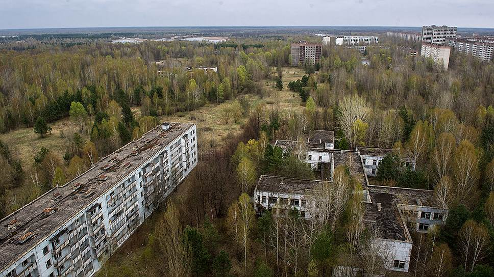 Природа постепенно захватывает территорию заброшенного города — на крышах и первых этажах многих зданий растут березы, ветки через окна торчат в квартирах, птицы вьют гнезда на балконах и в телефонных будках