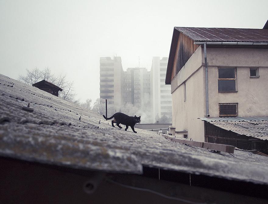 streets_of_Romania_5