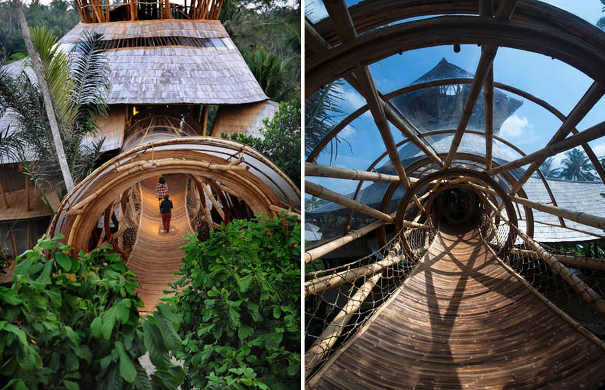 По прочности бамбук не уступает бетону и стали.