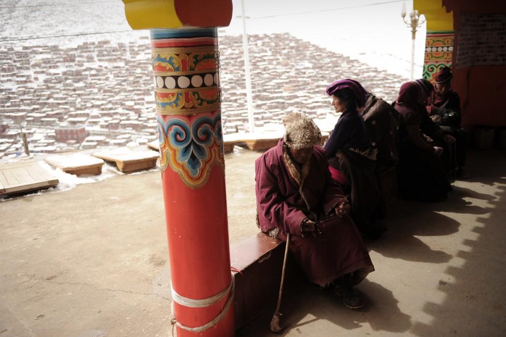 tibet_seda_13