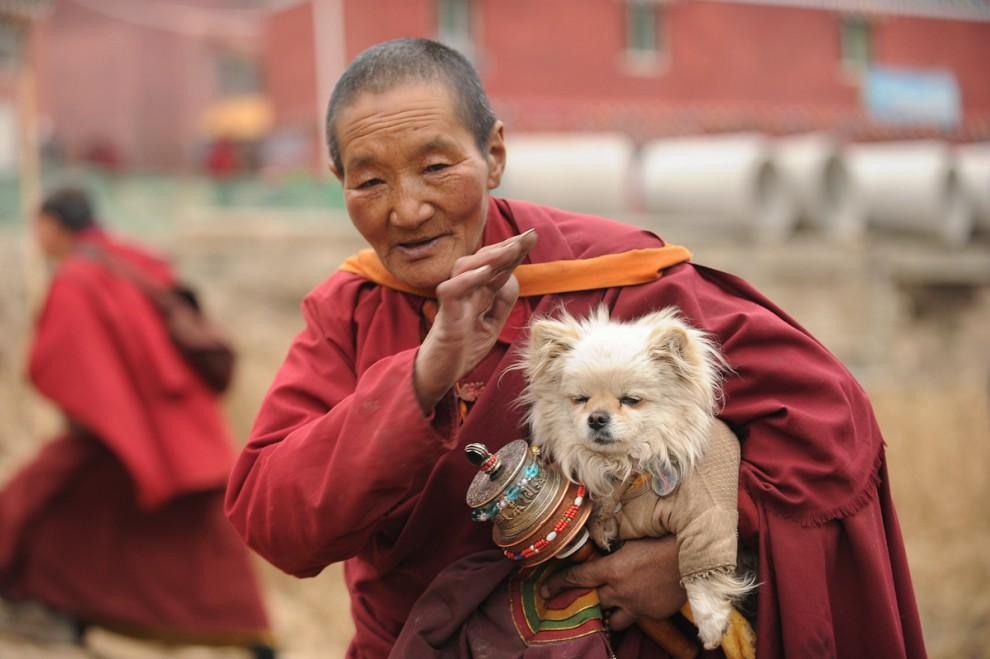 tibet_seda_16