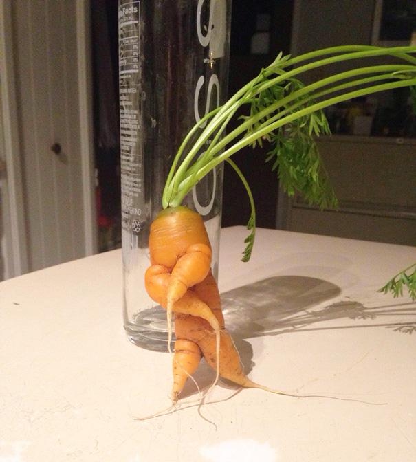 Морковка человечек