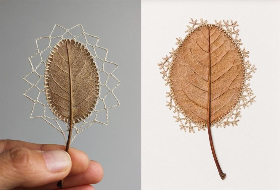 Гербарий из связанных сушеных листьев