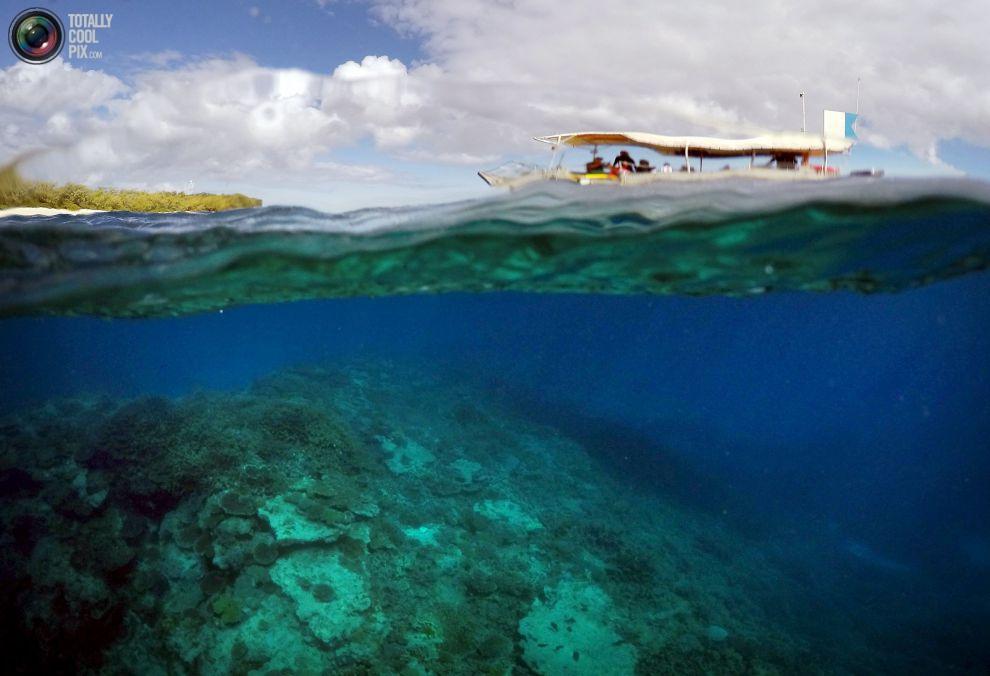 """Лодка с туристами проплывает рядом с """"коралловыми садами""""."""