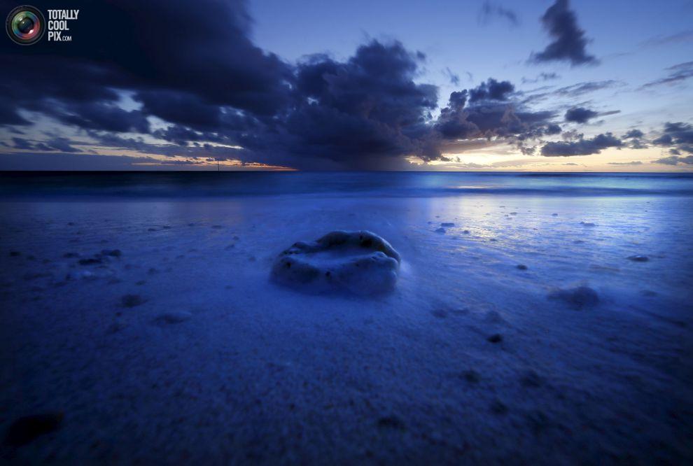 Риф раковины лежит на пляже, когда садится солнце на острове Леди-Эллиот.
