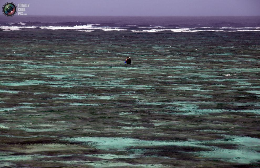 Турист со шноркелем в лагуне, расположенный на острове Леди-Эллиот, к северо-востоку от города Бандаберг в штате Квинсленд, Австралия.