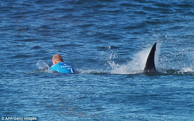 Mick_Fanning_Shark_2