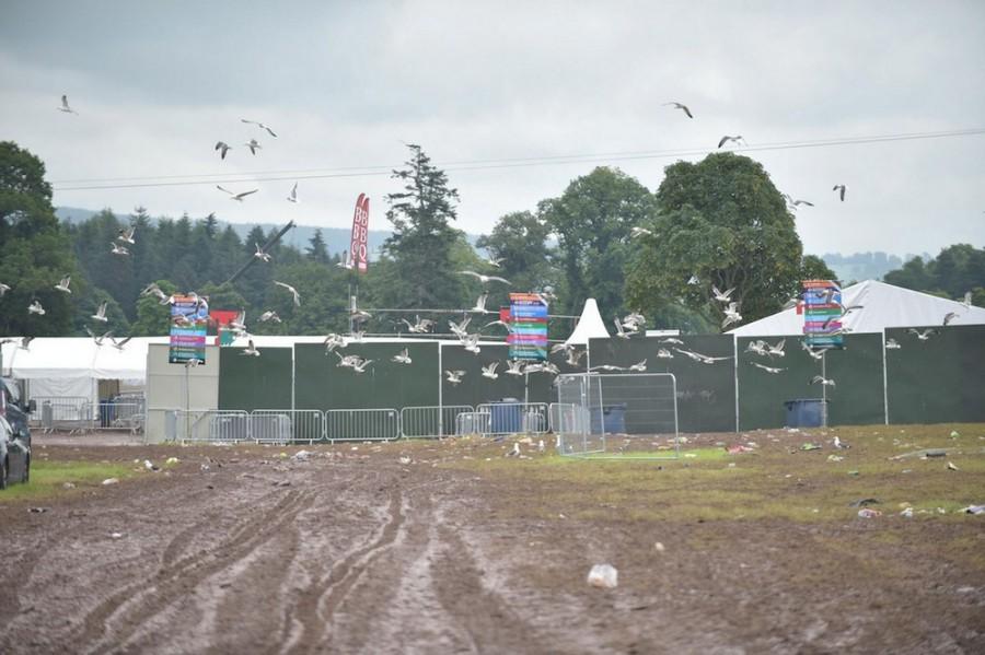 Scotland_festival_rock_8