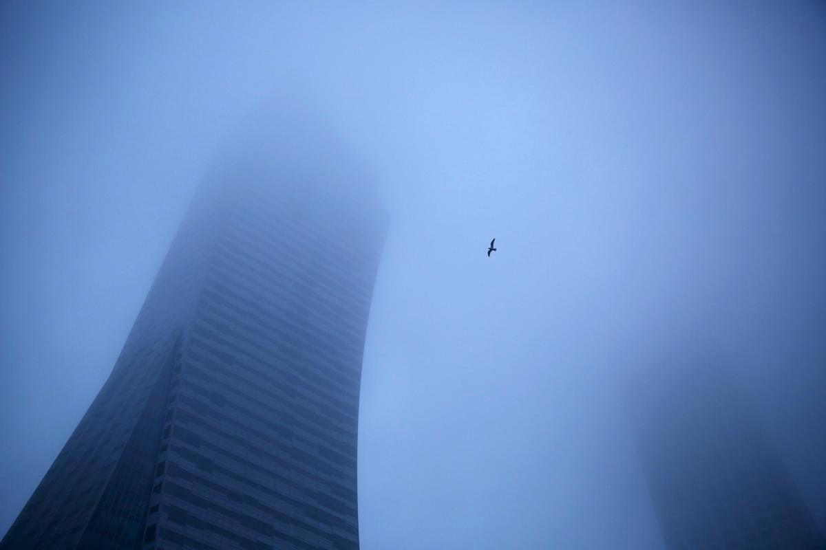 Туман и птица в небе в центре Варшавы, Польша. (Фото: Kacper Pempe)