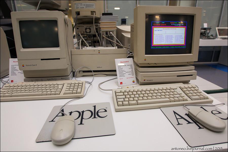 apple_10