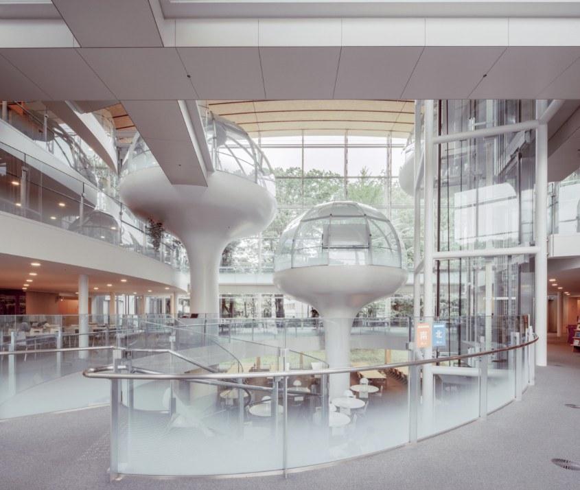 Сейкейская Университетская Библиотека, Мусашино, Токио