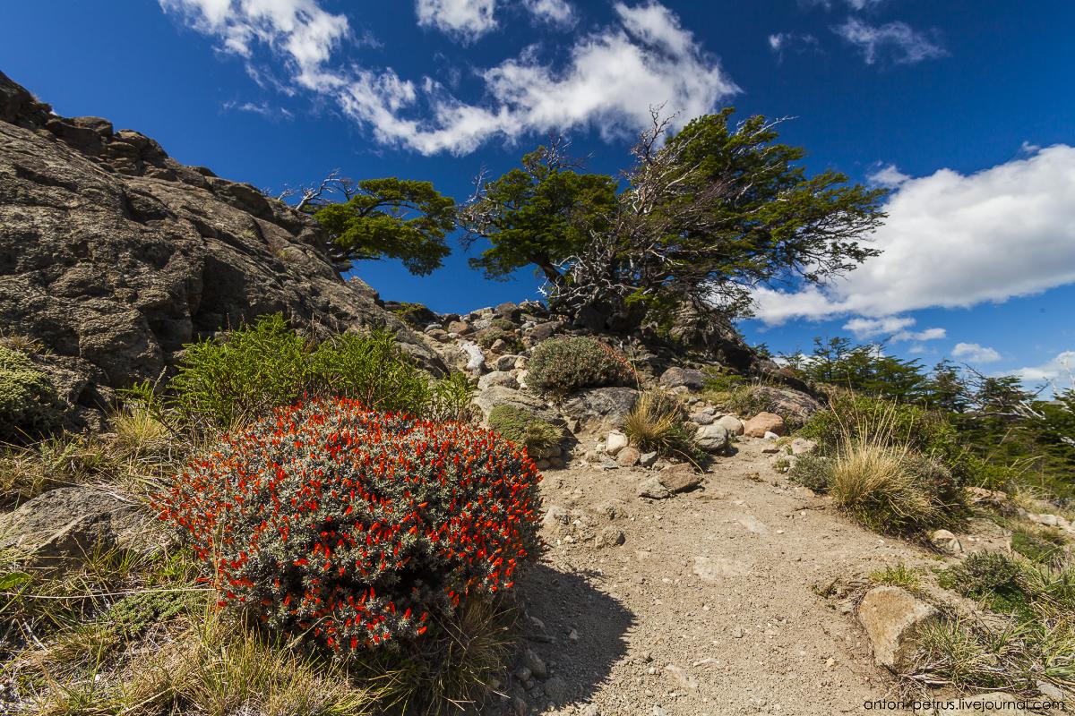 Patagonia_1_4