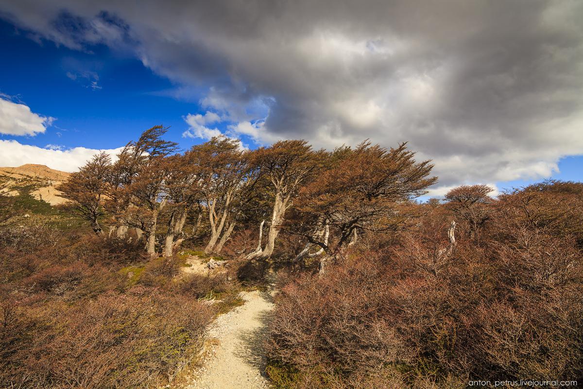Patagonia_2_10