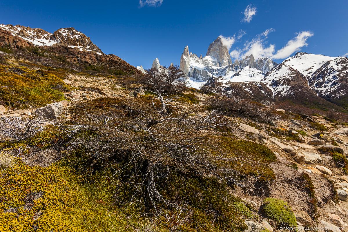 Patagonia_2_4