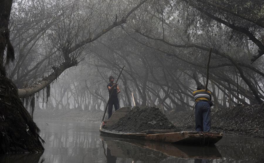 Кашмирские крестьяне перевозят песок на лодке по озеру Vullar во время густого тумана к северу от Сринагара, 23 ноября 2015
