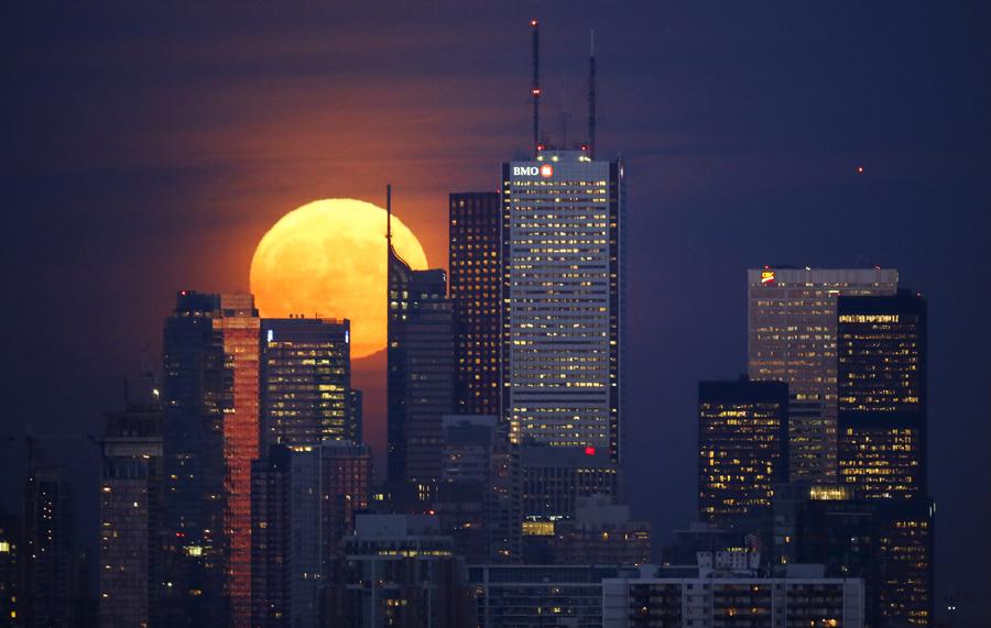Луна встает из-за горизонта в Торонто, 25 ноября 2015 года