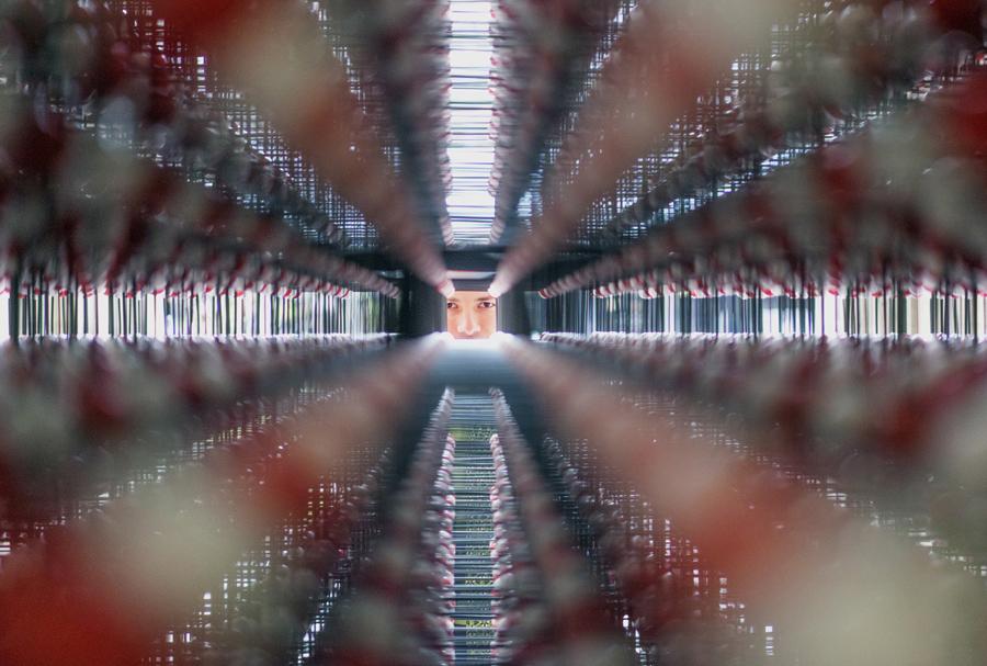 Австрийский ученый доктор Роберт Крикл (Dr. Robert Krickl) создал крпнейшую по величине трехмерную модель кристалла поваренной соли. Она увеличена примерно в миллиард раз. Модель состоит из 38,800 красных и белых шариков, символизирующих ионы натрия и хлора, а также 10 километров палочек, которые их соединяют