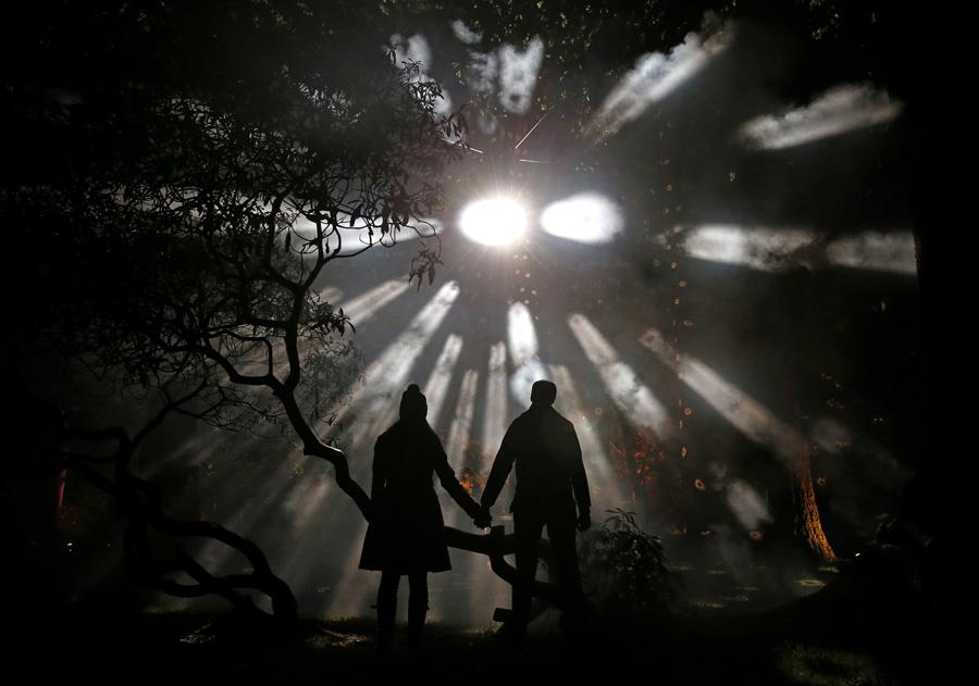 Посетители позируют фотографу во время проведения мероприятия дендрарии Westonbirt, Tetbury, Англия, 25 ноября 2015 года