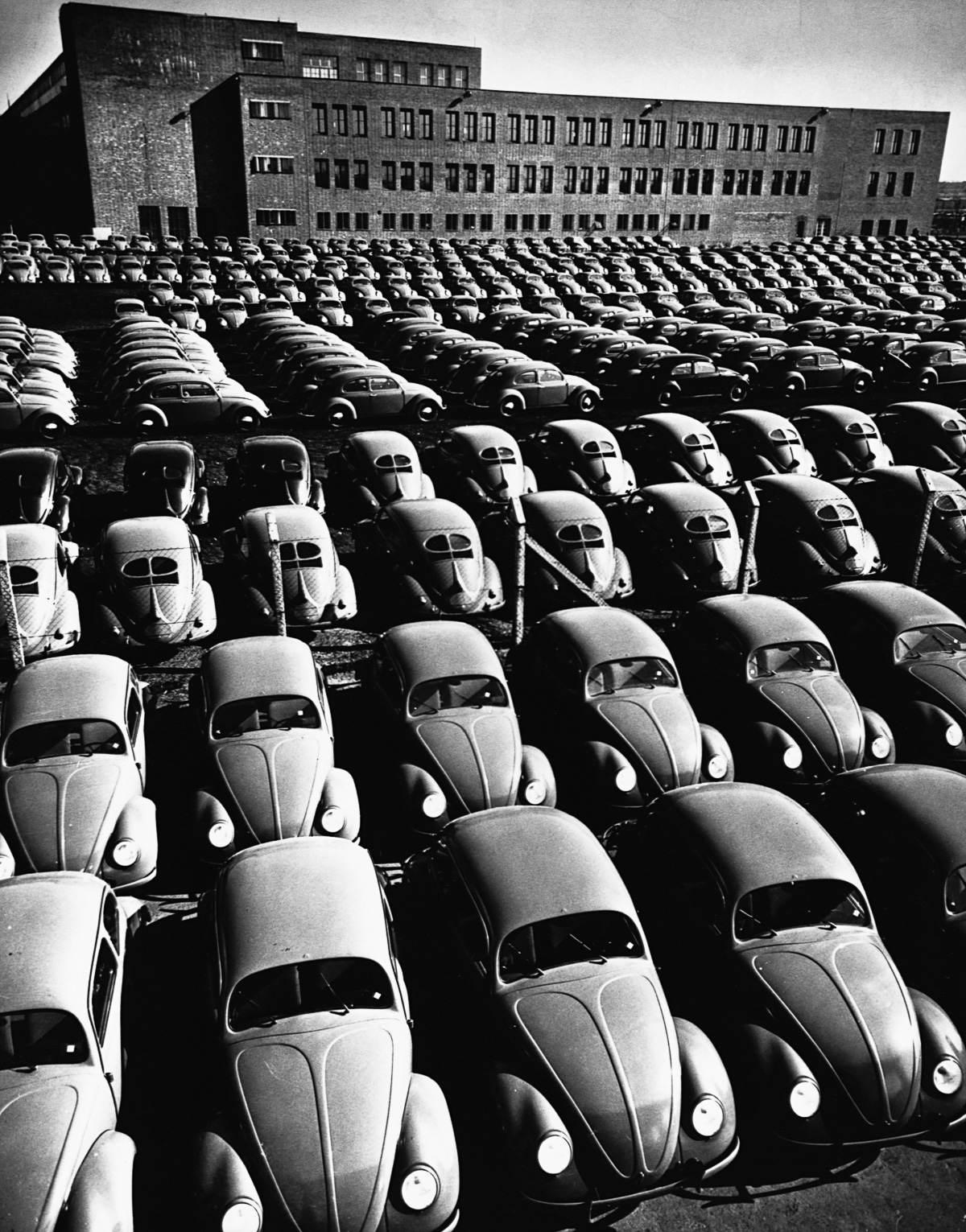 "1953-1954, Germany --- Finished Volkswagen ""Beetles"" fill a storage yard at the VW factory near Brunswich, West Germany, in the early 1950s. 