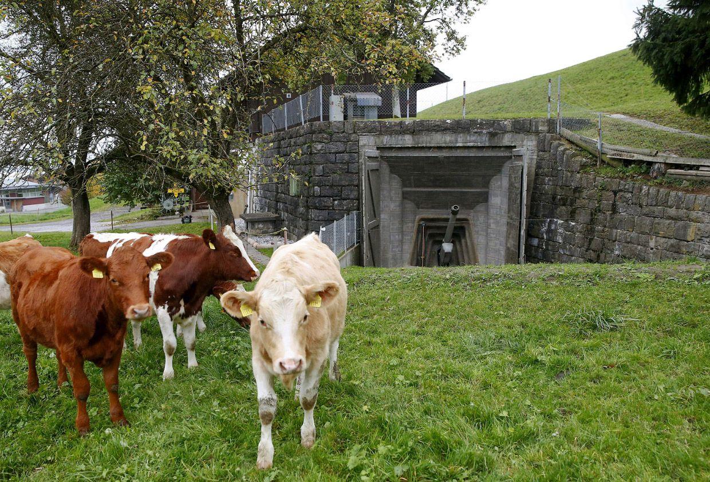 Бывший Швейцарский армейский артиллерийский Форт в городе Фаулензее, Швейцария, 19 октября 2015 года. Мы использовали его в военных целях с 1943 по 1993 год. Теперь это музей.