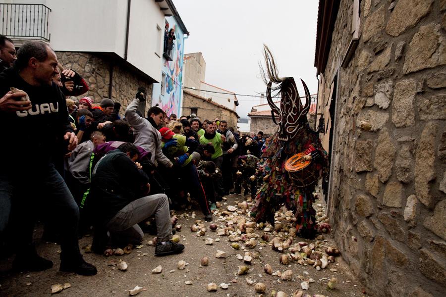Люди кидаются репкой, 20 января 2016.
