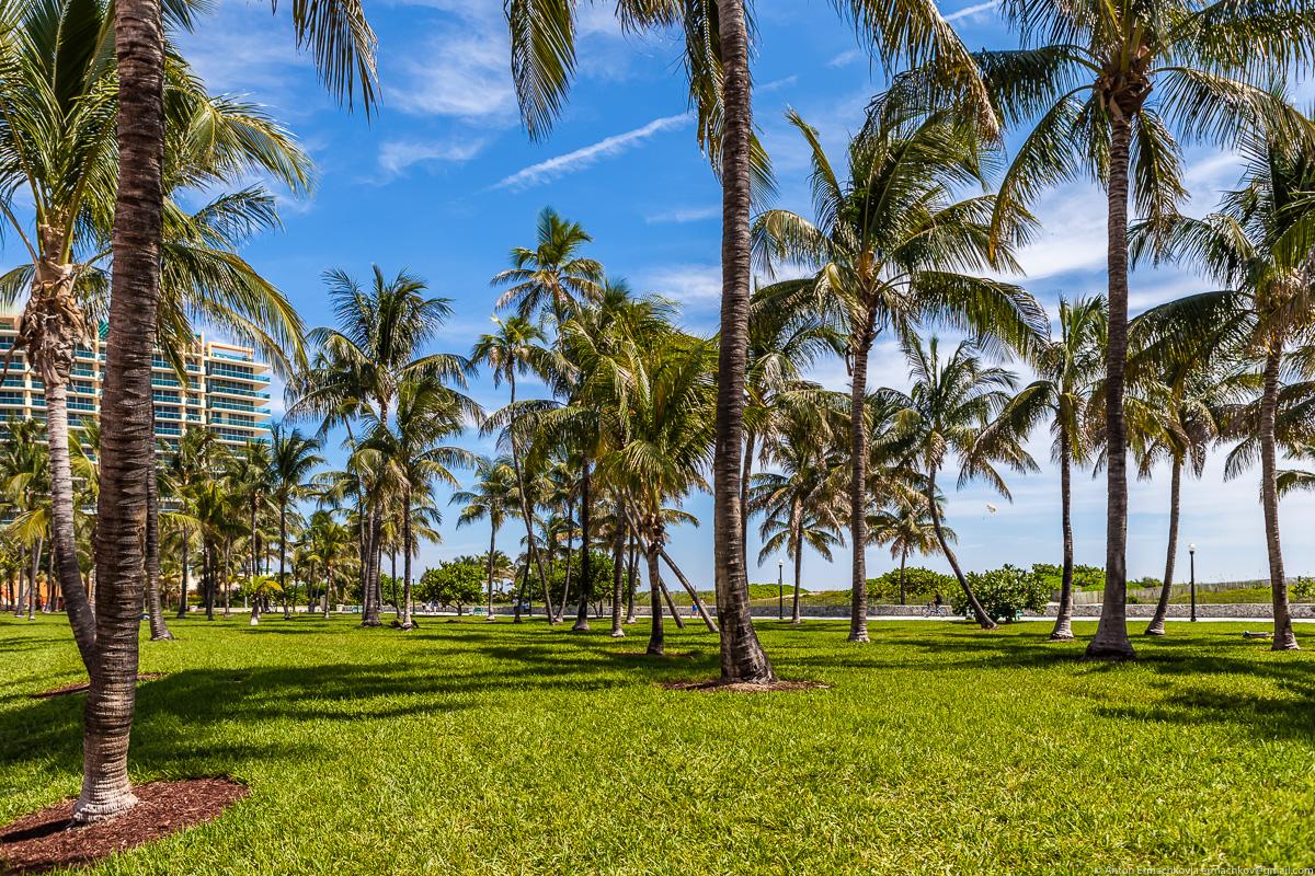 Miami_034