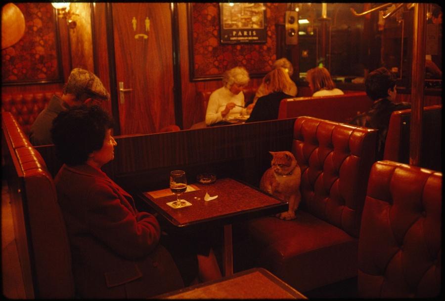 Постоянный посетитель ресторана Le Louis IX по прозвищу Карамелька составляет компанию клиенту, Париж, Франция, май 1988