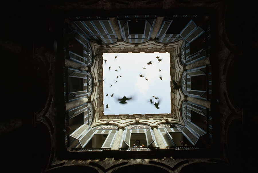 Стая птиц вылетает из закрытого внутреннего дворика, Старая Гавана, Куба, декабрь 1987