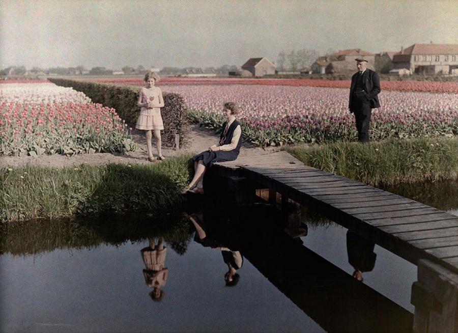Местные жители отдыхают на тюльпановых полях вдоль канала в Харлеме, Нидерланды, 1931