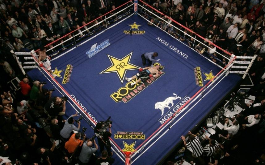 MGM Гранд Гарден Арена, Лас-Вегас, США