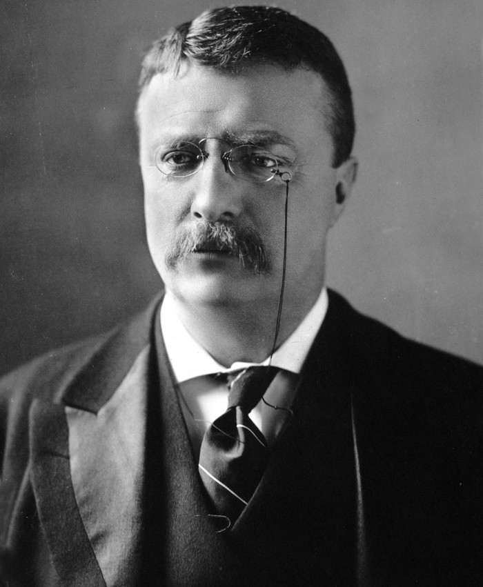 Теодор Рузвельт был машиной для убийств