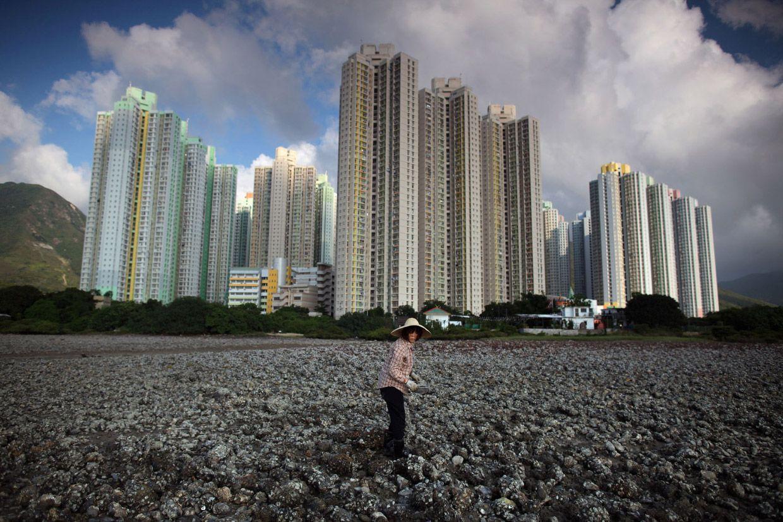 На берегу возле жилых районов, во время отлива на острове Лантау можно отыскать моллюсков. Фото: Ed Jones
