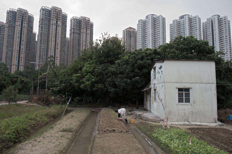 Сад и жилые небоскребы. Его до сих пор можно встретить в Гонконге в этом районе. Фото: Nicolas Asfouri